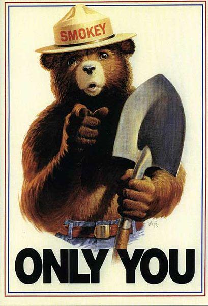 Áp phích năm 1985 kêu gọi bảo vệ rừng ở Hoa Kì